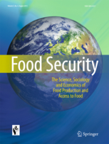 Food security publication cover