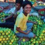 boy holding fruit