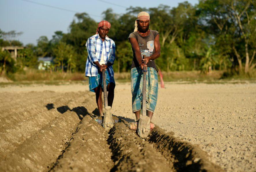 Two men plowing a field